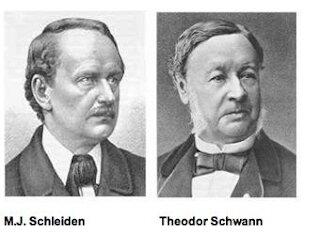 Mathis Jakob Scheiden y Theodor Schwann