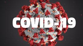 Covid- 19: el virus que infectó al mundo timeline