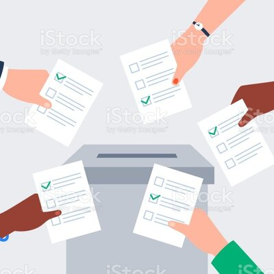 Consulta popular. timeline