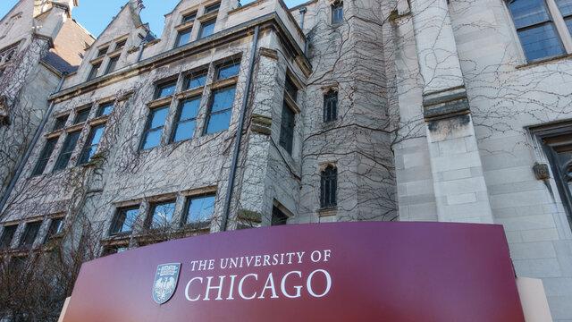 Professor Universidade de Chicago -EUA