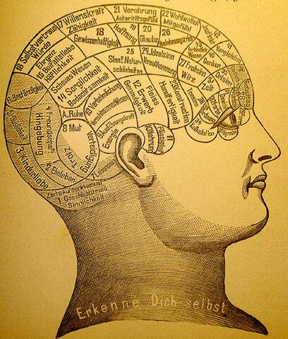 Platón sugirió que el cerebro es el mecanismo de los procesos mentales.