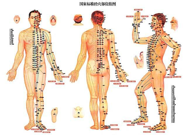 Textos chinos describen en detalle puntos de acupuntura y tratamientos.