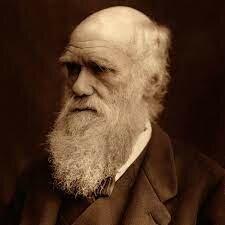 1809-1882 Charles Robert Darwin