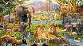 Evolución de los animales timeline