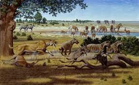 Época Mioceno