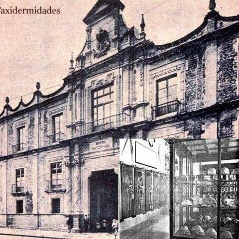 Museo de Antigüedades e Historia Natural