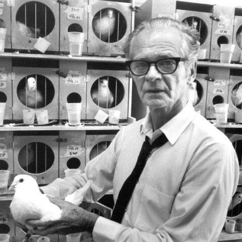 B.F. Skinner describió la terapia conductual, prestando apoyo para la psicología conductual a través de la investigación en la literatura.