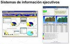 1980 a 1990: Sistemas de información ejecutivo