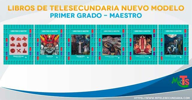 1970 Se proyectaron 1132 lecciones de primer año, 1116 del segundo año y 1188 del tercero de Telesecundaria.