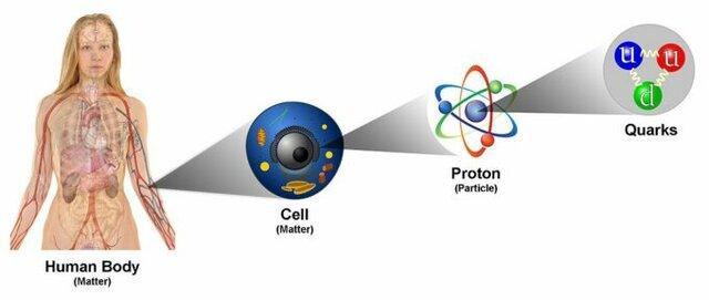 Descobriment dels quarks