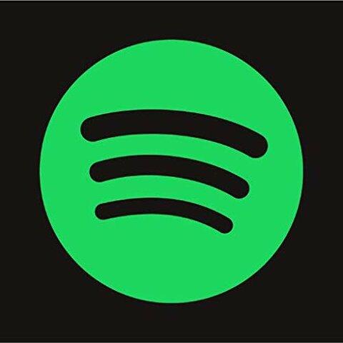 es va llençar Spotify (cultural)