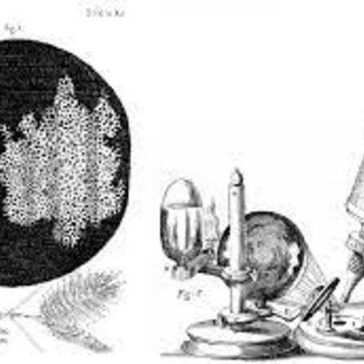 Desde los inicios del descubrimiento del microscopio hasta los postulados de la teoría celular timeline