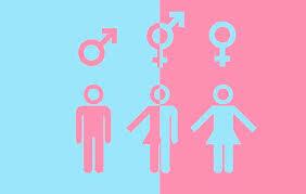 Enfoque de Género. Ideología de género