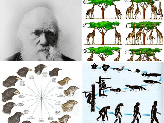 """Charles Darwin """"El Origen de las Especie"""""""