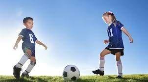¿Futbol o Voleibol?