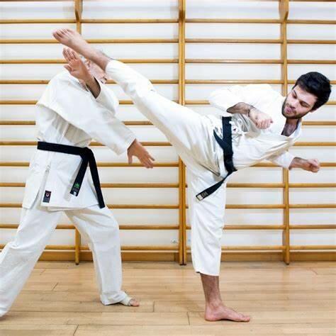 Karate es converteix en un joc olimpic (Cultural)