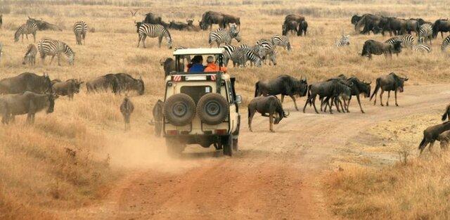 Viatjo a Àfrica