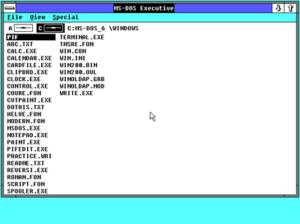 Windows 2- 16 bits