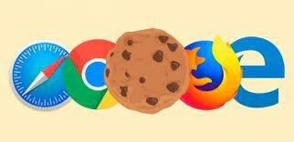 cookie en la web