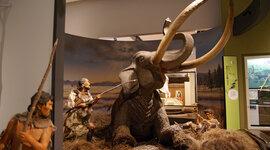 Japan in de prehistorie timeline