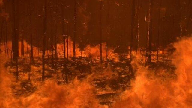 incèndis forestals d'Austràlia (climàtic)