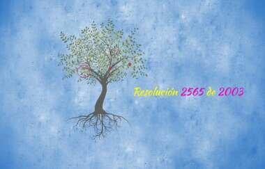 RESOLUCIÓN 2565