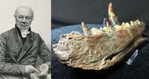 Primeros fósiles de dinosaurios (1822)