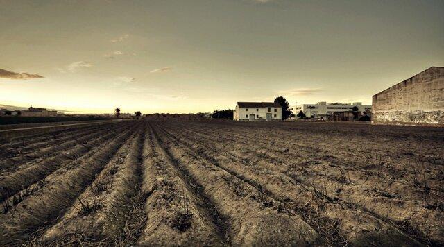 Despoblamiento de las tierras cultivables