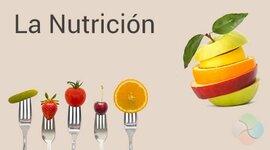 NUTRICIÒN EN LAS CIVILIZACIONES timeline