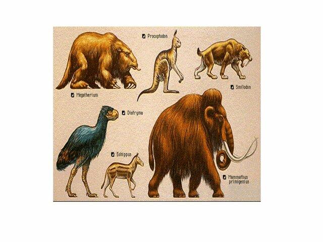 Era de los mamíferos