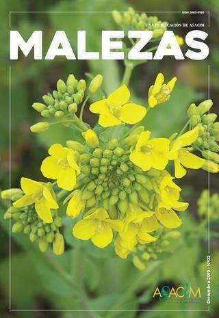 Revista Weeds