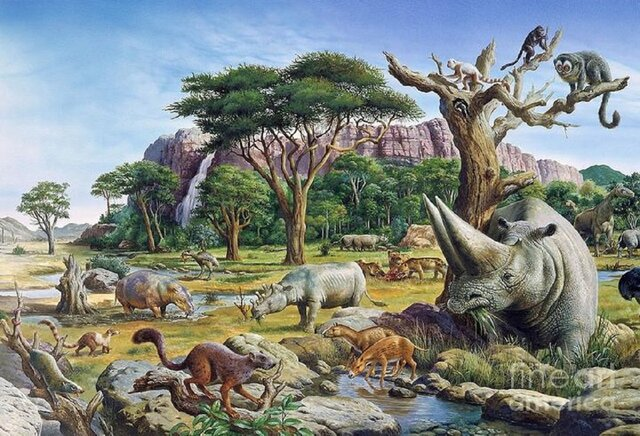Periodo Paleógeno