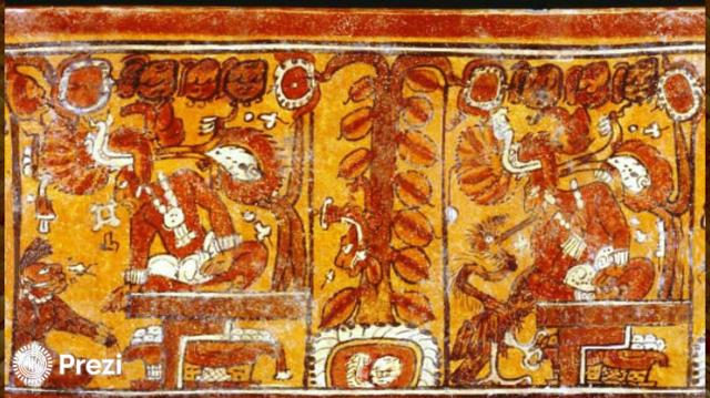 500 D.C