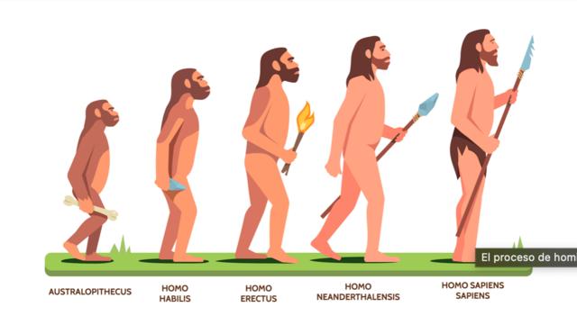 ¿cómo se desarrollo el hombre? proceso de hominización