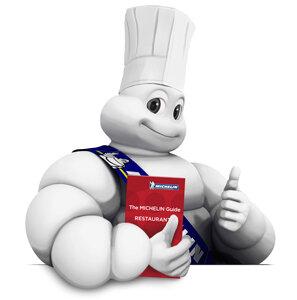 Surge Guía Michelin