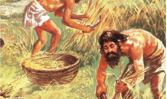 Revolución Agrícola