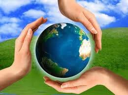 Aparición del término desarrollo sustentable