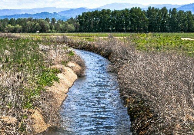 Surge la irrigación agrícola y se cultiva maíz, frijol, calabaza, chile, algodón huautli (alegría).