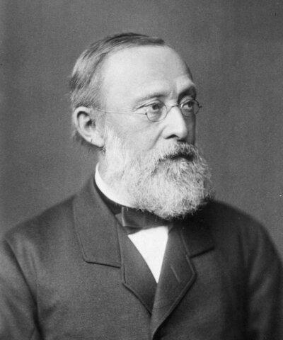 Р.Вирхов изучил размножение клеток