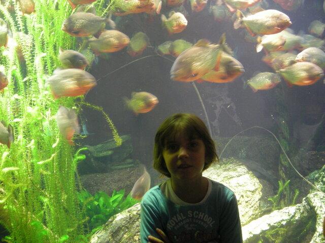 Prima volta all'acquario di Genova