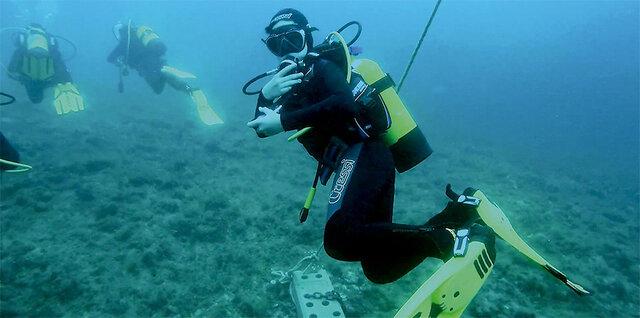Faig submarinisme