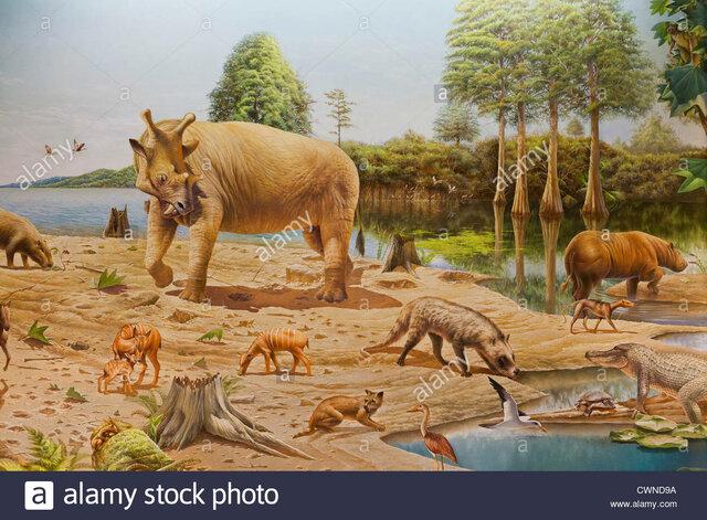 Paleogeeni ajastu