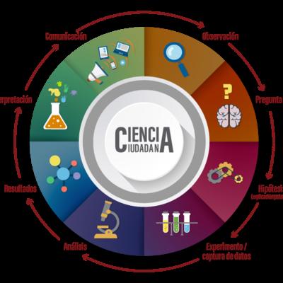 Participación Ciudadana en México timeline