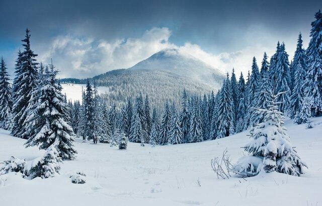 Primera vegada que vaig anar a la neu