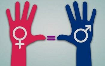 Noción del término género