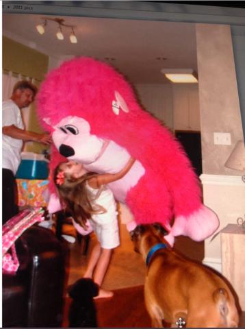 gané un muy grande mono por mi cumpleaños. Recibí mi perro y fueron al playa. Era verano y hacía muy de cálido.el cantante de moda era Carly Rae Jepsen