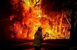 Incendis Australia (CLIMÀTIC)