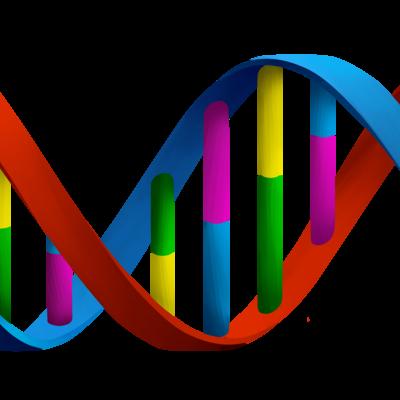 DNA HISTORY timeline