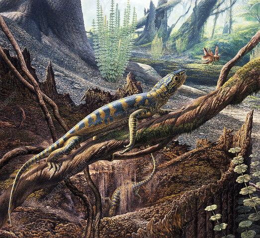 Esimene roomaja Hylonomus
