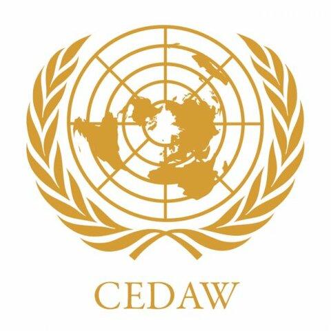 Convención sobre la Eliminación de la Discriminación contra la Mujer (CEDAW)